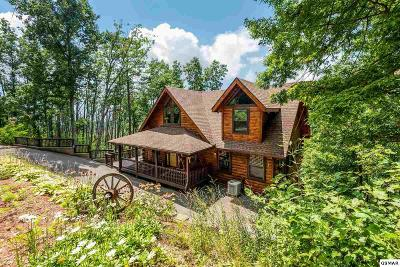 Single Family Home For Sale: 813 Pine Top Lane