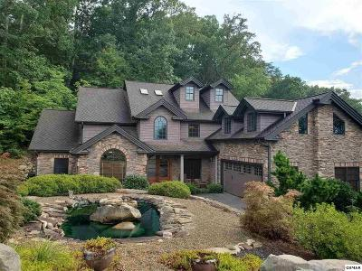 Sevierville Single Family Home For Sale: 205 Bobwhite Trail