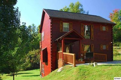 Gatlinburg Single Family Home For Sale: 1143 Upper Alpine Way