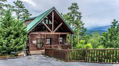 Sevierville Single Family Home For Sale: 2251 Upper Middle Creek Rd # 34
