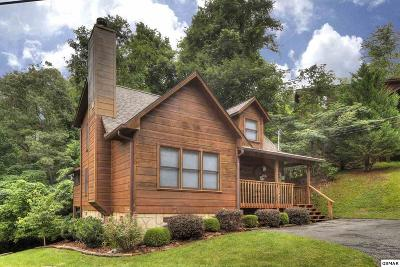 Gatlinburg Single Family Home For Sale: 309 Elk Cove Way