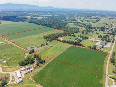 Farm & Ranch for Sale in Great Smoky Mountains, TN