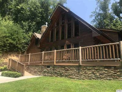 Sevierville Single Family Home For Sale: 2445 Sunset Road