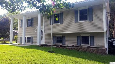 Kodak Single Family Home For Sale: 477 Klondike Cir