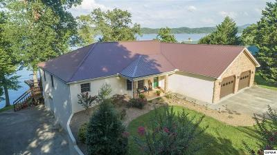Sevier County, Jefferson County Single Family Home For Sale: 2120 Bridge View Dr