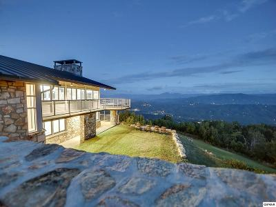 Sevierville Single Family Home For Sale: 2940 Tower Rd