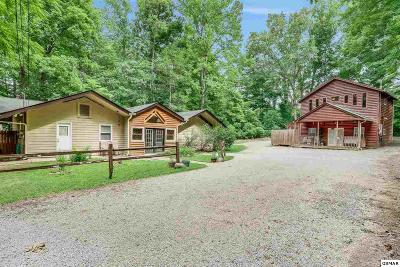 Gatlinburg Multi Family Home For Sale: 433 Winfield Heights Rd.