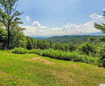 Blount County Residential Lots & Land For Sale: 226 Fencerail Gap