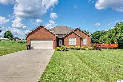 Sevierville Single Family Home For Sale: 1420 Broadview Cir