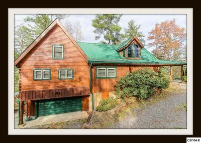 Sevierville Single Family Home For Sale: 4265 Alpine Ridge Way