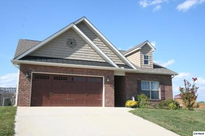 Sevierville TN Single Family Home For Sale: $229,000