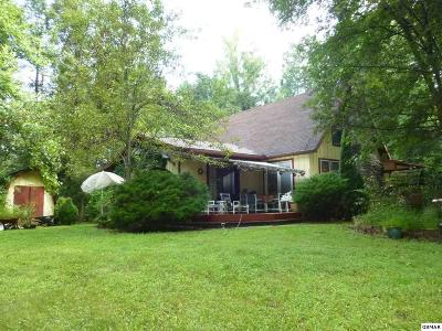 Cosby Single Family Home For Sale: 154 Hollow Rd.