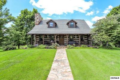 Dandridge Single Family Home For Sale: 1321 Gaby Hills Dr