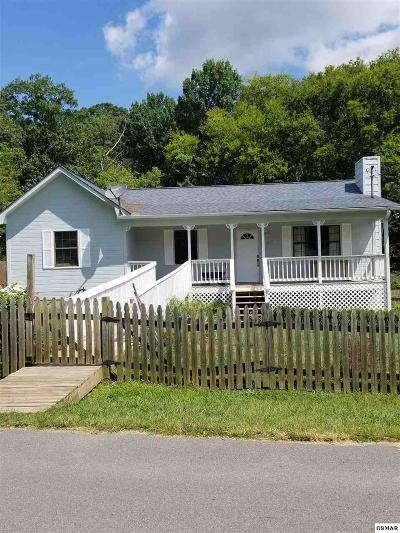 Sevierville Single Family Home For Sale: 1228 Payne School Drive