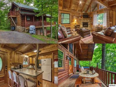 Sevierville Single Family Home For Sale: 2134 Red Bud Rd