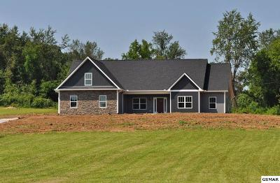 Sevierville Single Family Home For Sale: 1816 Valley Estates Drive