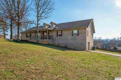 Sevierville Single Family Home For Sale: 1315 Old Red Lane