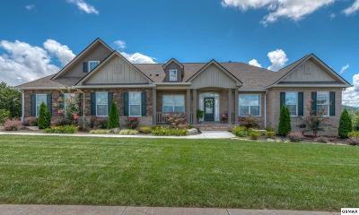 Sevierville Single Family Home For Sale: 1432 Park Place Ave