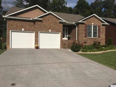Seymour Single Family Home For Sale: 313 Joshua Landing Court