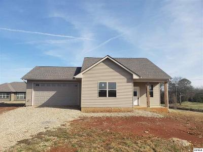 Sevierville Single Family Home For Sale: 2103 Frewin Ct
