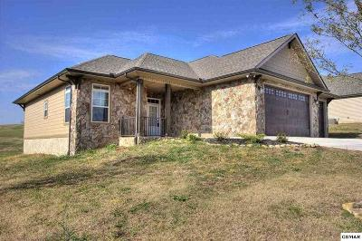 Single Family Home For Sale: 2247 Frewin Ct