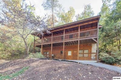 Pigeon Forge Single Family Home For Sale: 653 Eagles Blvd Way