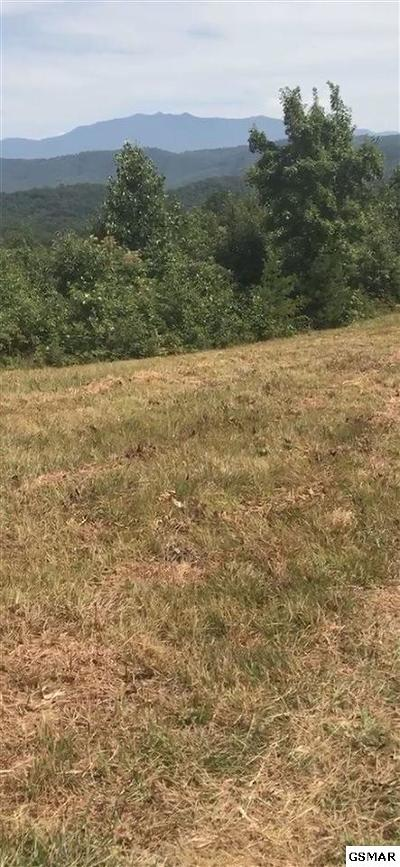 Sevierville Residential Lots & Land For Sale: 2270 Trace Way