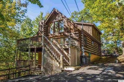 Single Family Home For Sale: 809 Ski View Ln