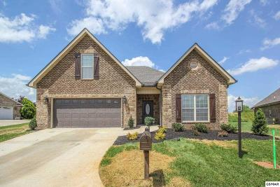Maryville Single Family Home For Sale: 121 Medinah Circle