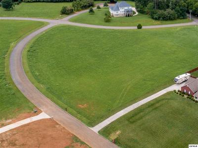 Blount County Residential Lots & Land For Sale: 518 Bainbridge Drive