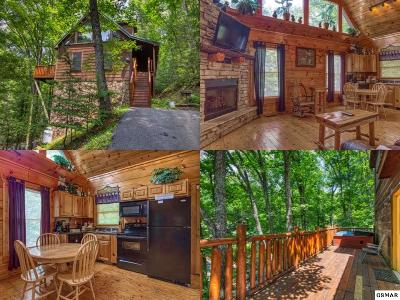 Sevierville Single Family Home For Sale: 1606 School House Gap Road