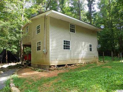 Sevierville Single Family Home For Sale: 1546 Lin Creek Road