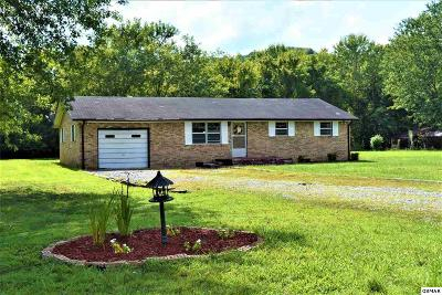 Cocke County Single Family Home For Sale: 119 Roy Rd.
