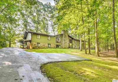 Sevierville Single Family Home For Sale: 1646 White Oak Dr