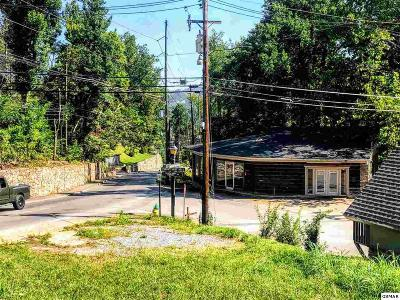 Sevier County Commercial For Sale: 523 Cherokee Orchard Road