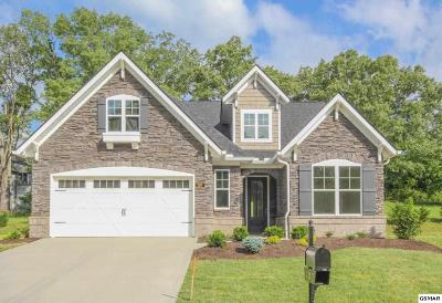 Maryville, Alcoa, Knoxville, Townsend Single Family Home For Sale: 107 Broady Meadow Circle