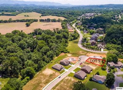 Friendsville, Greenback, Louisville, Maryville, Sevierville, Tallassee, Townsend, Townsend/walland, Vonore, Walland Residential Lots & Land For Sale: 119 Broady Meadow Circle