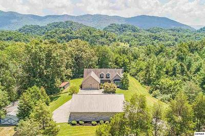 Single Family Home For Sale: 976 Country Ln