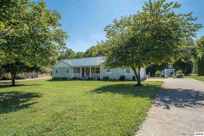 Kodak Single Family Home For Sale: 1101 Eagle View Dr