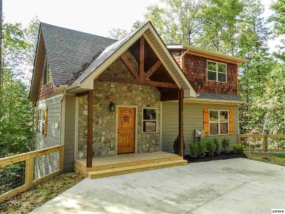 Single Family Home For Sale: 411 Potters Ridge