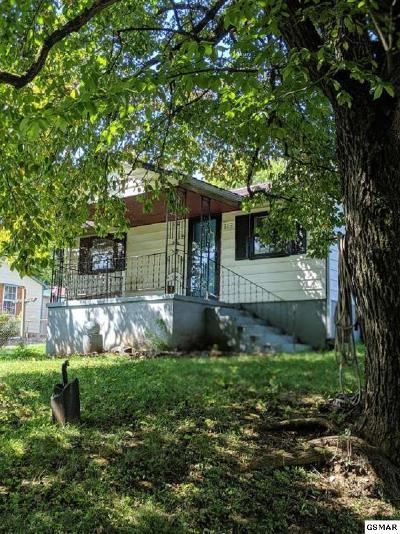 Knoxville Single Family Home For Sale: 813 Sapphire Rd