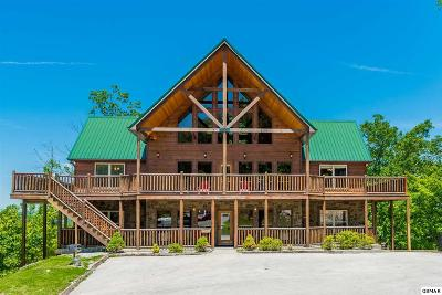 Sevierville Single Family Home For Sale: 3650 Wilderness Mountain Rd