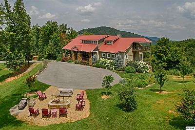 Sevierville Single Family Home For Sale: 3656 Henry Town Rd