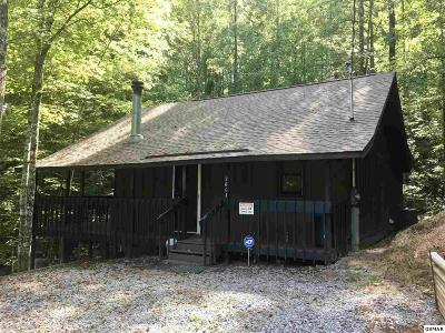 Sevierville Single Family Home For Sale: 2604 Hawks Trail Drive