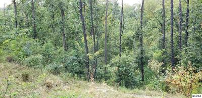Sevierville Residential Lots & Land For Sale: 3205 Panther