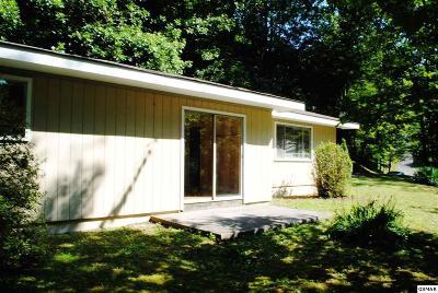 Gatlinburg TN Single Family Home For Sale: $144,000