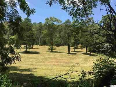 Jefferson City Residential Lots & Land For Sale: Tract 2 Sellers Road