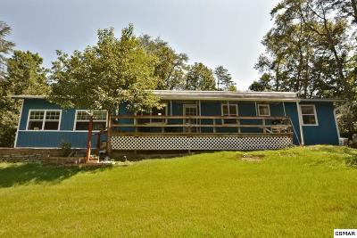 Sevierville Single Family Home For Sale: 1748 Paulas Huskey Circle