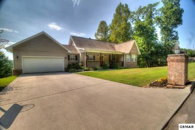 Seymour Single Family Home For Sale: 820 Mountain Grove Ln