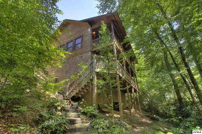 Sevierville Single Family Home For Sale: 2919 Golden Pond Way